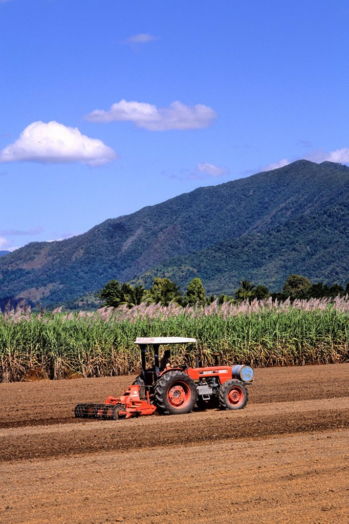 Stock Photo: 1566-1171519 Tractor Plowing Fields at Local Sugar Farm Near Rex Lookout in Cairns Australia Queensland
