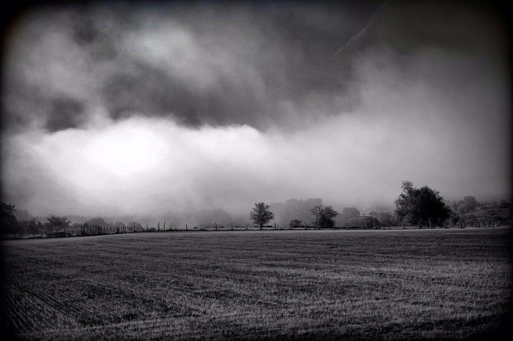 Stock Photo: 1566-1171575 paisaje rural sugerente con arboles, nublado y solitario , suggestive rural landscape with trees, Cloudy and lonely