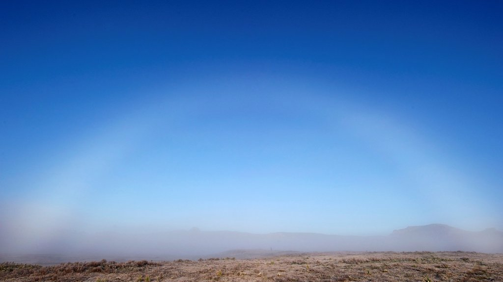 Fog bow in the Bale Mountains of Ethiopia : Stock Photo