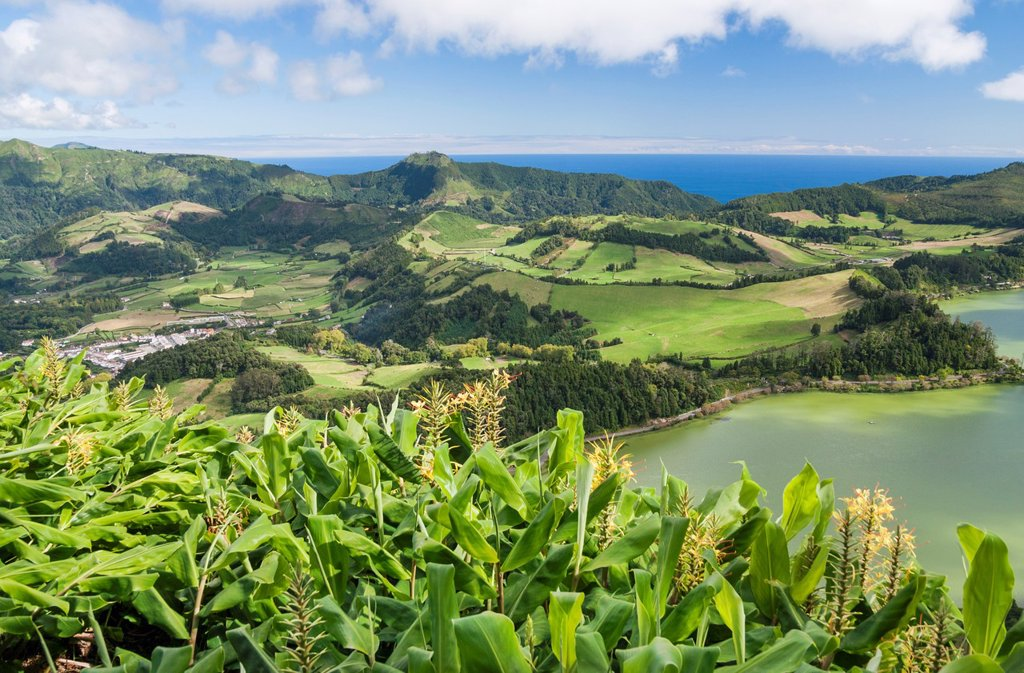 Stock Photo: 1566-1177419 View over Furnas lake towards the coast on Sao Miguel island in The Azores