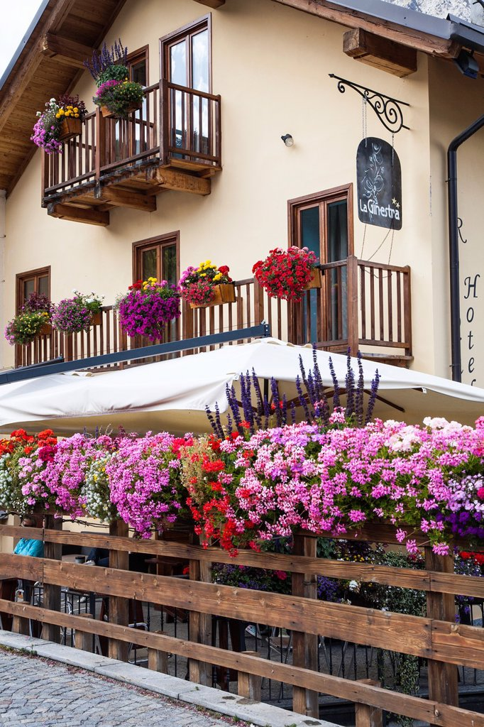 Stock Photo: 1566-1179031 Summer flowers decorating the bridge at Cesana Torinese, Piemonte, Italy