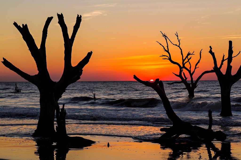 Sunrise over Boneyard Beach on Bulls Island, South Carolina  Bulls Island is a Sea Island 3 miles off the mainland and part of the Cape Romain National Wildlife Refuge : Stock Photo