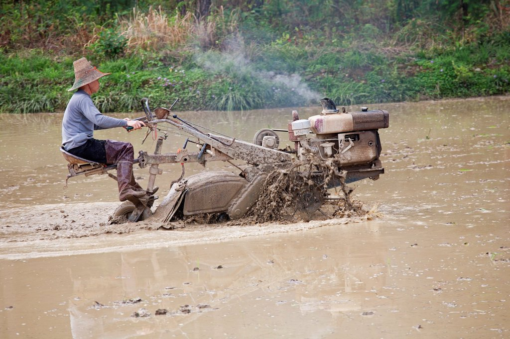 Chinese farmer working with a motorized plow in a rice field in southeast China : Stock Photo