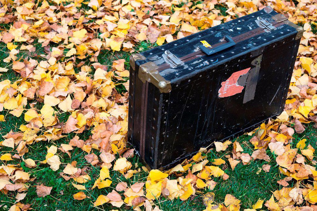 Stock Photo: 1566-1182792 Autumn in Catalonia, Spain