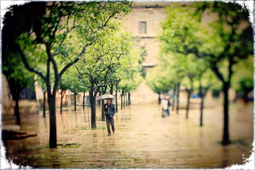 Stock Photo: 1566-1182834 Man with an umbrella, Patio de los Naranjos, Seville, Spain  Tilted lens used for a shallower depth of field