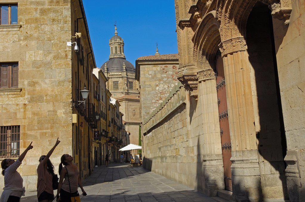Salamanca, Calle de los Libreros  Via de la Plata, Libreros street, Castilla-Leon, Spain. : Stock Photo