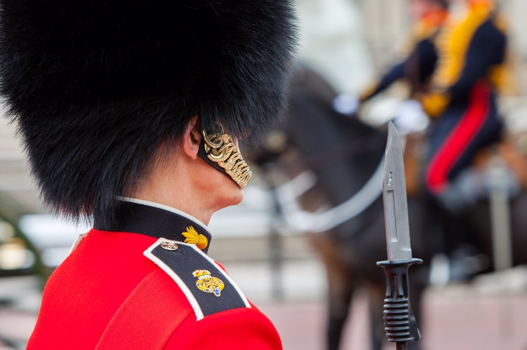 Stock Photo: 1566-1184744 Member of the Scots Guard at Buckingham Palace, London England, UK