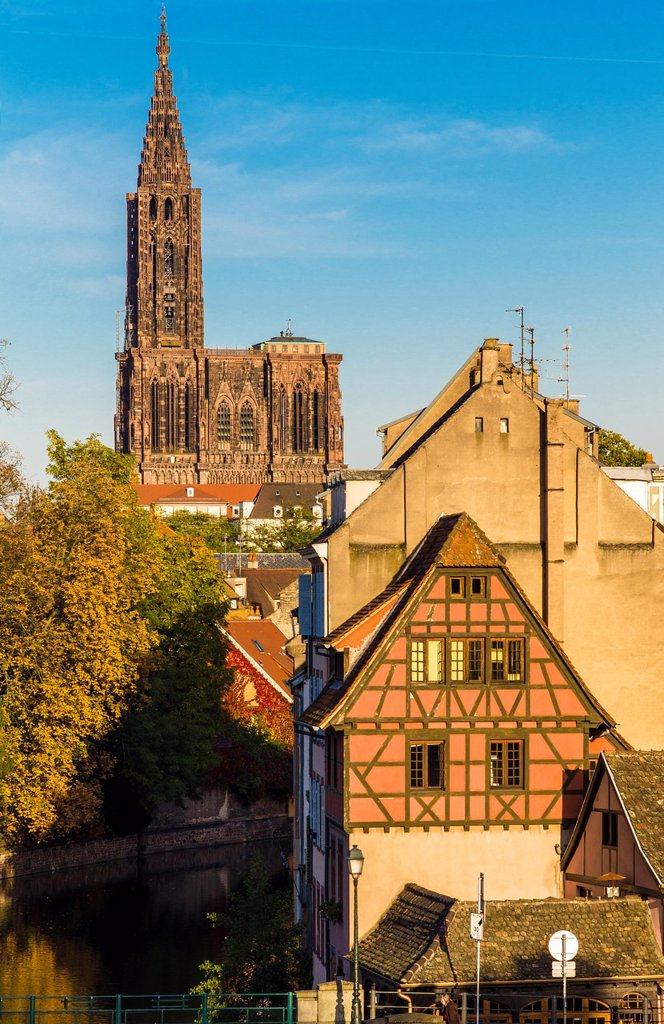 Houses cathedral Strasbourg Alsace France : Stock Photo