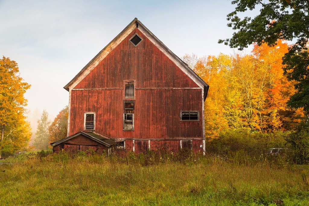 Stock Photo: 1566-1185184 Red barn in Cabot, Vermont, USA