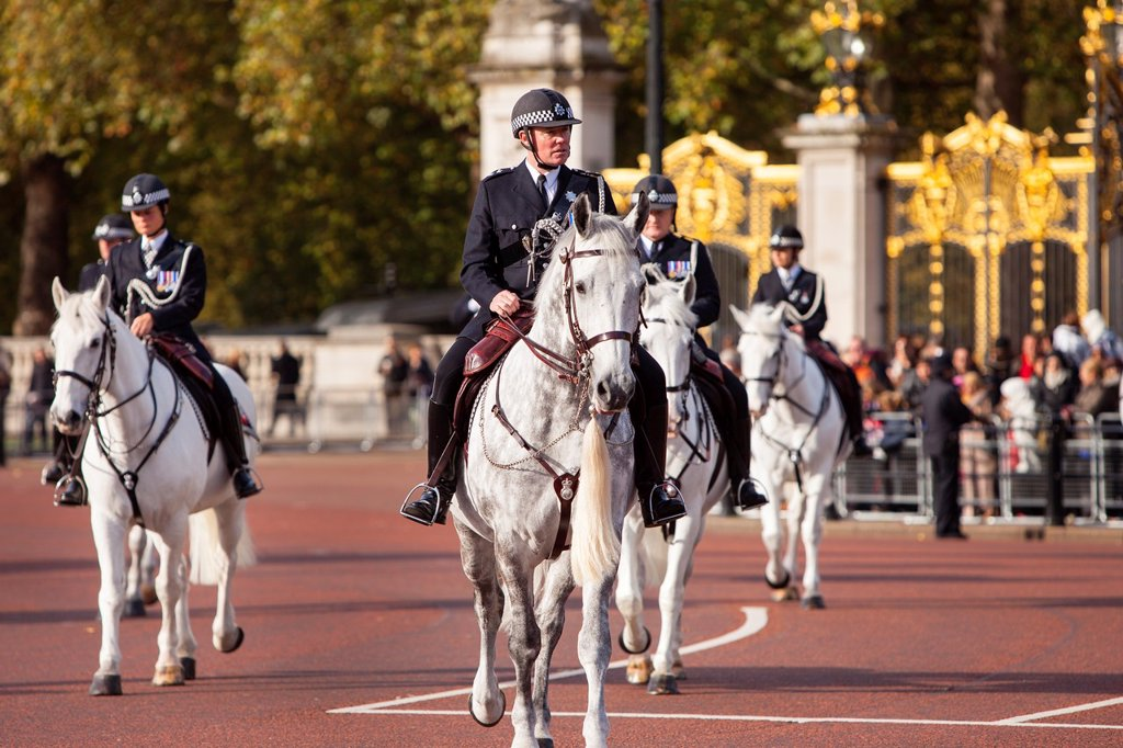 Mounted Police detail at Buckingham Palace, London England, UK : Stock Photo