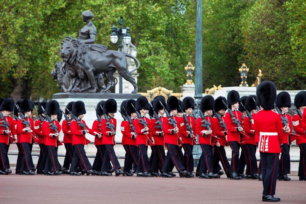 Members of the Scots Guard on parade at Buckingham Palace, London England, UK : Stock Photo