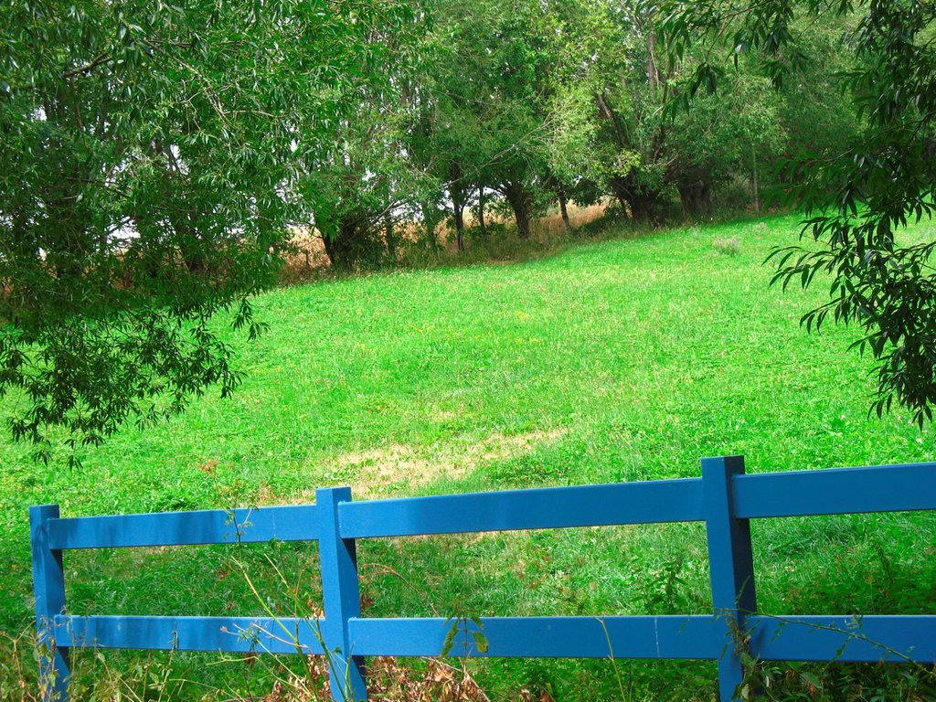 Stock Photo: 1566-1190573 Fence in a meadow French Pyrenees.