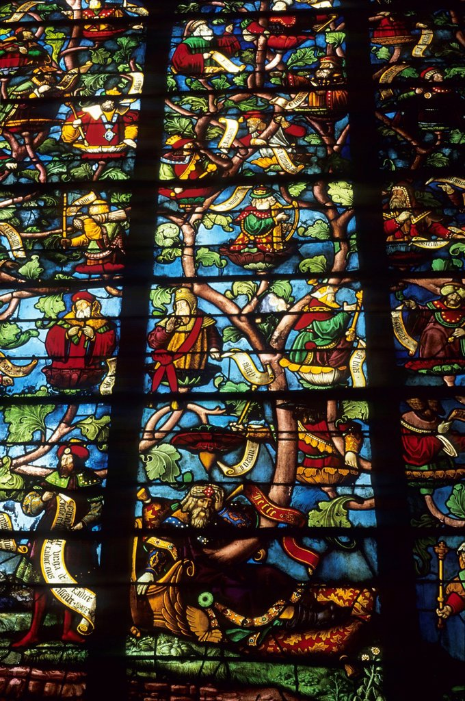 Stock Photo: 1566-1191359 Tree of Jesse stained glass window of Ste Madeleine church, Troyes, Aube department, Champagne-Ardenne region, France, Europe