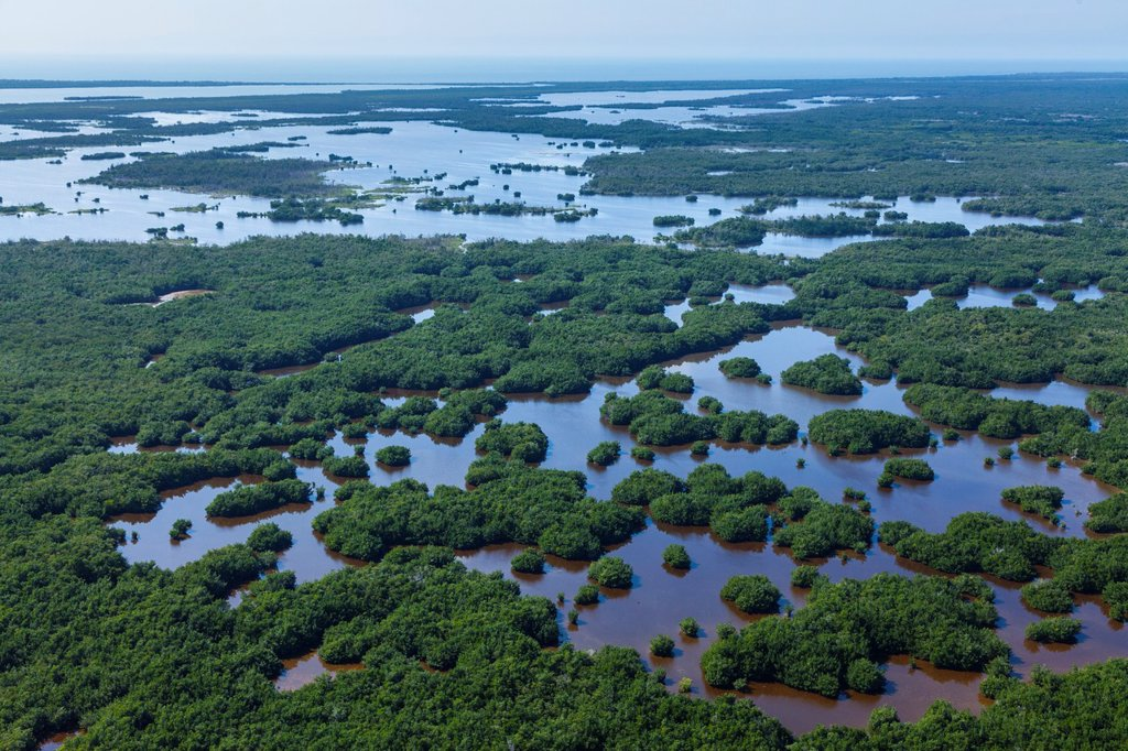 Stock Photo: 1566-1192506 Aerial view, Everglades National Park, Florida, USA.