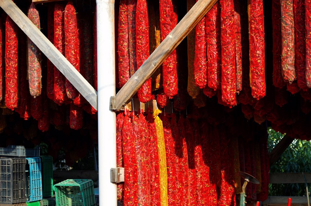 Paprika chillies drying in sheds - Kalocsa Hungary : Stock Photo