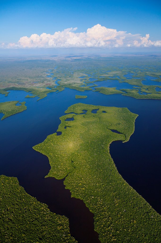 Aerial view, Everglades National Park, Florida, USA. : Stock Photo