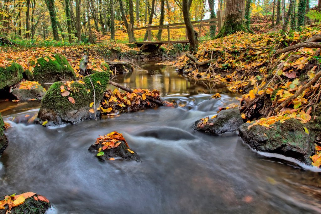 France, Brittany, Cotes d Armor, Pleudihen sur Rance, Brook in the valley of Val Hervelin, HDR image : Stock Photo
