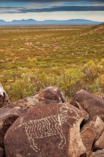 Bighorn sheep in Jornada Mogollon style rock art at Three Rivers Petroglyph Site over Tularosa Valley, San Andres Mountains in distance, Chihuahuan Desert, New Mexico, USA : Stock Photo