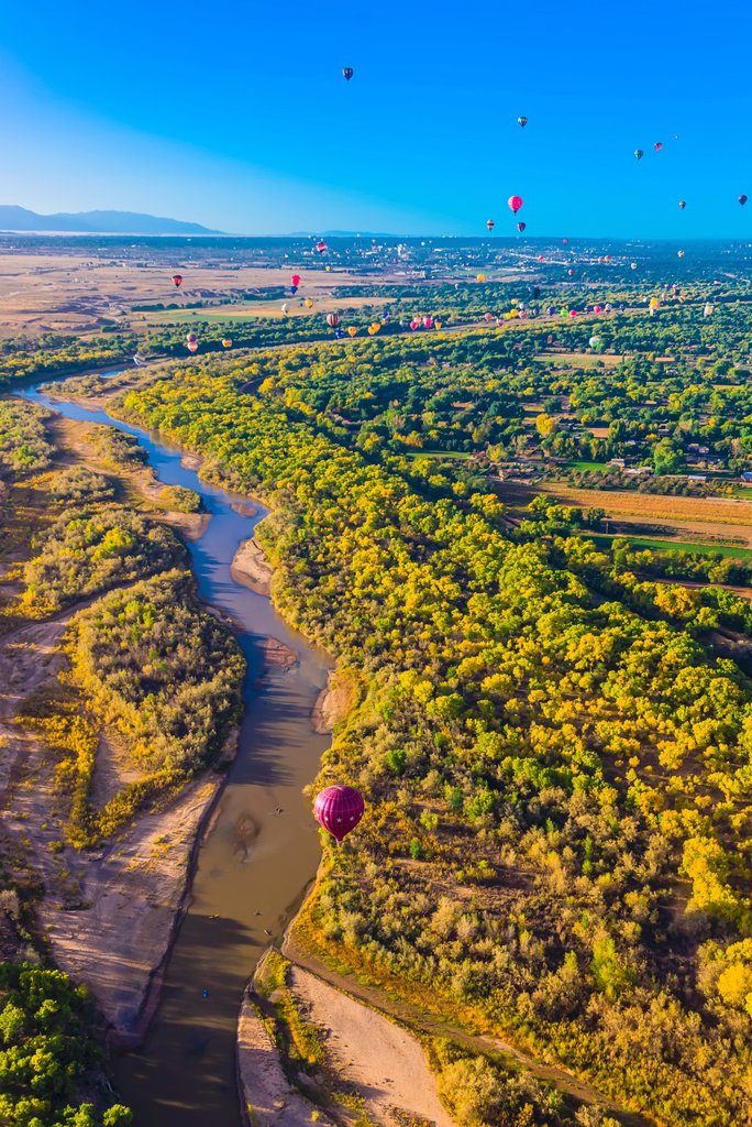 Stock Photo: 1566-1203069 Aerial view, hot air balloons flying during the Albuquerque International Balloon Fiesta, Albuquerque, New Mexico USA