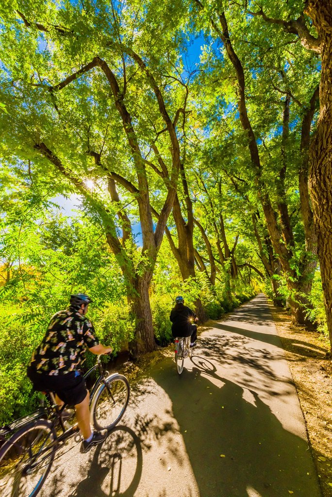A couple bicycle down a verdant tree lined road, Los Poblanos Historic Inn & Organic Farm, Los Ranchos de Albuquerque, Albuquerque, New Mexico USA : Stock Photo