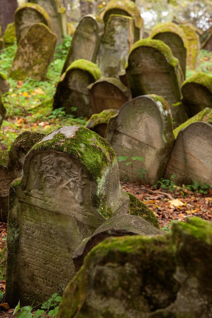 Stock Photo: 1566-1203608 The Jewish cemetery in Lesko  Poland