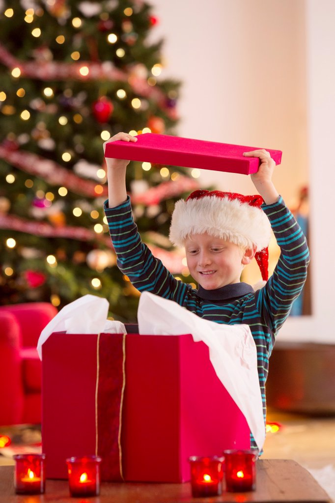 Stock Photo: 1566-1204622 Young boy opening a Christmas present on Christmas day