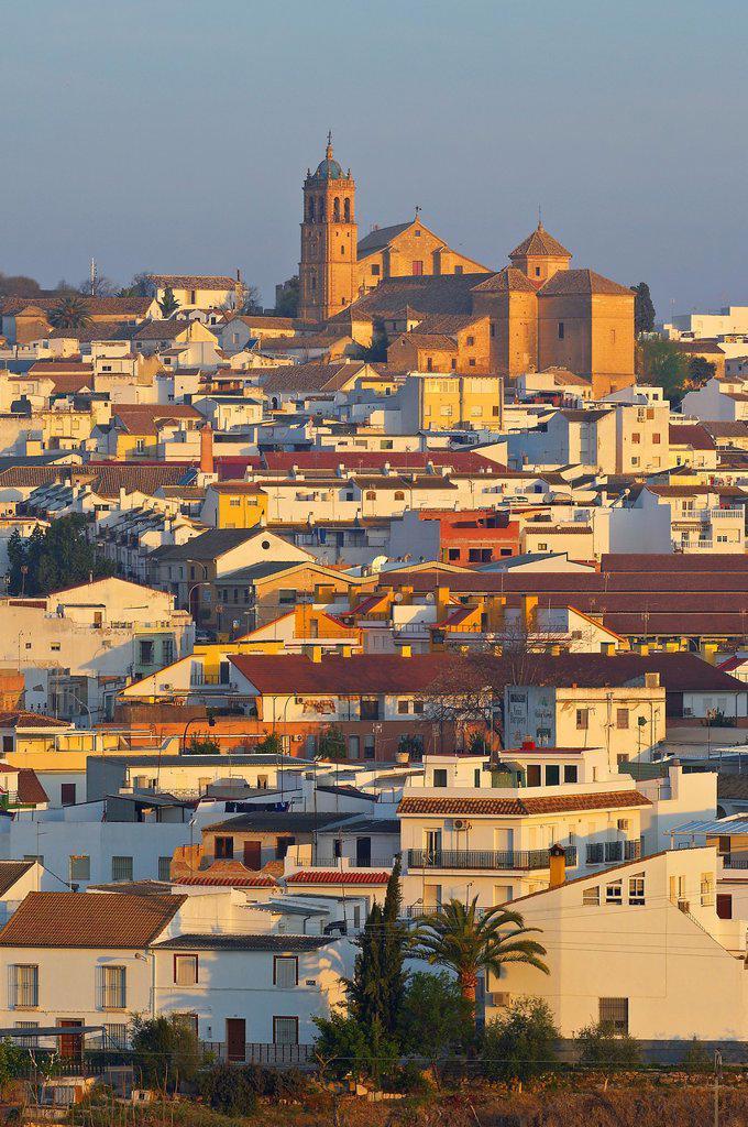 Montilla, Cordoba province, Montilla-Moriles area, , Andalusia, Spain : Stock Photo