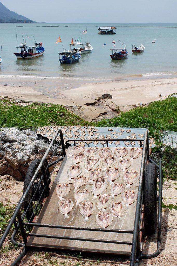 Stock Photo: 1566-1208233 Traditional fishing net, stockfish, Andaman Sea, Langkawi, Kedah, Malaysia.