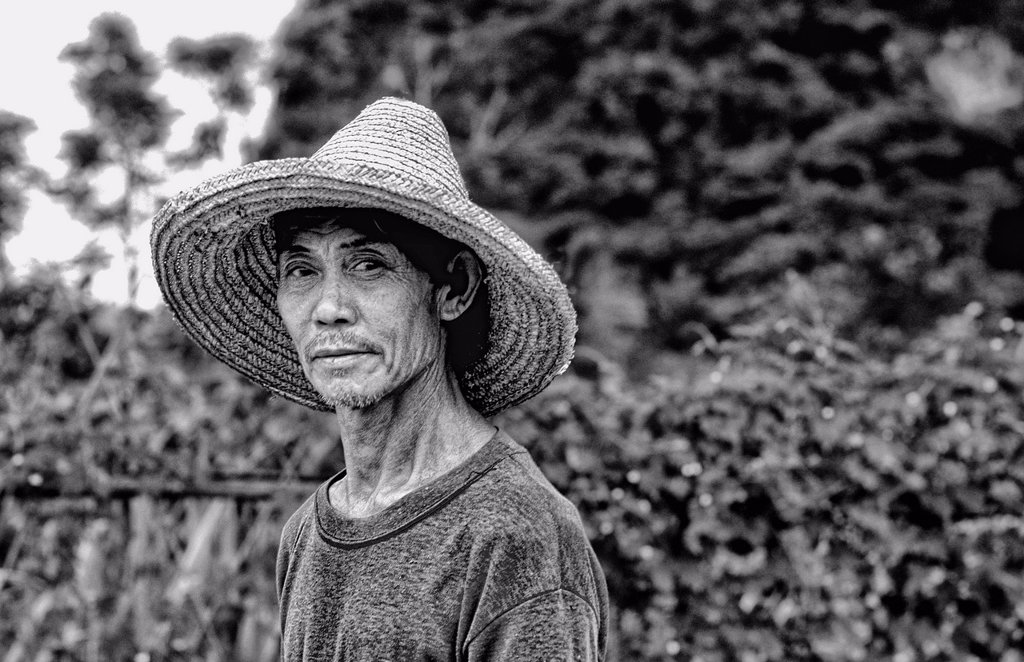portrait of Chinese famrmer on farm in Guilin China : Stock Photo