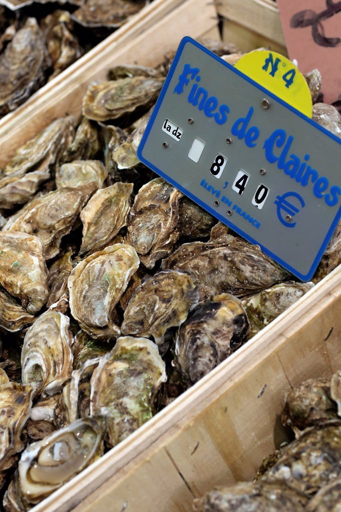 Stock Photo: 1566-1208712 Fresh Seafood, Oyster, Paris, Ile de France, France, Europe