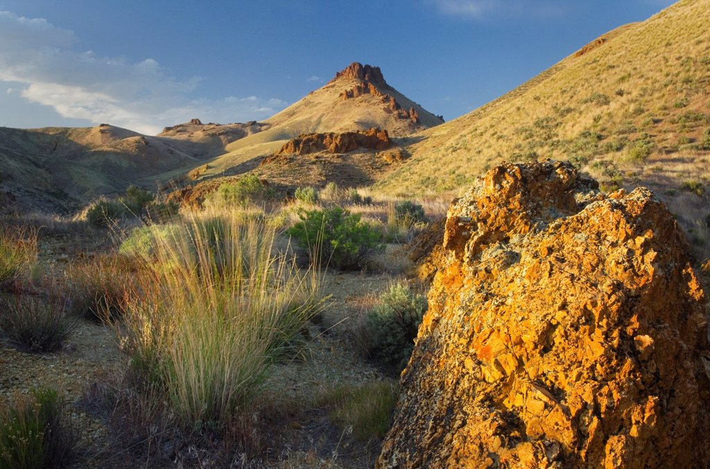 Spires and rock formations made of volcanic tuff in Leslie Gulch in the Owyhee Uplands of SE Oregon : Stock Photo