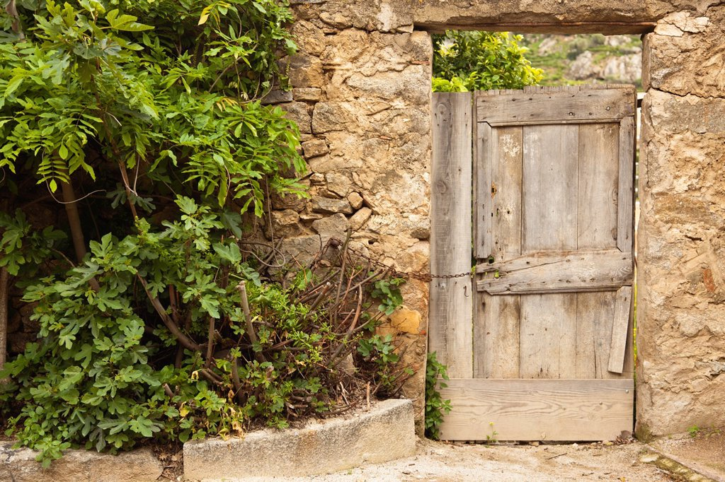 Stock Photo: 1566-1209795 France, Corsica, Haute-Corse Department, La Balagne Region, Pigna, artisanal village, door detail