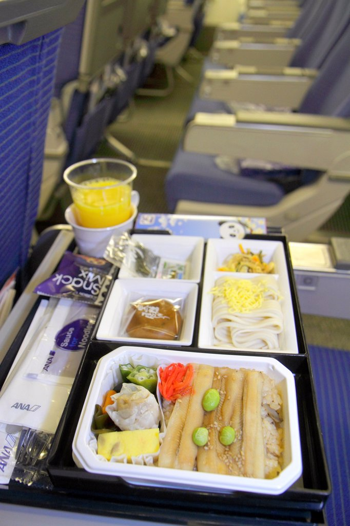Stock Photo: 1566-1210520 Japan, Tokyo, Narita International Airport, NRT, gate area, concourse, ANA, Al Nippon Airways, cabin, onboard, flight to Shanghai, food, meal, tray, noodles, dumpling, bamboo shoots,