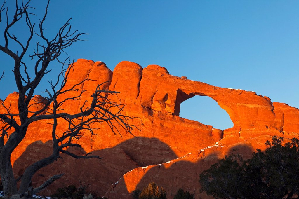 Stock Photo: 1566-1212317 Sunset at Skyline Arch with Dead Tree, Arches National Park, USA
