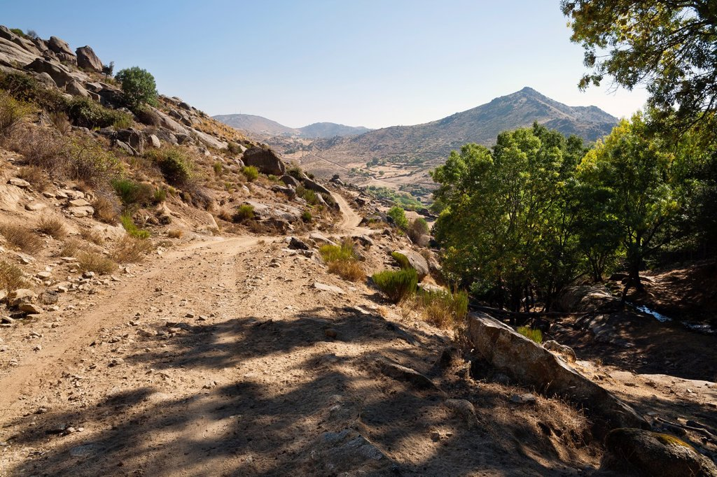 Stock Photo: 1566-1213011 Solanilla road in the Sierra de la Paramera  Navalmoral de la Sierra  Ávila  Castilla León  Spain