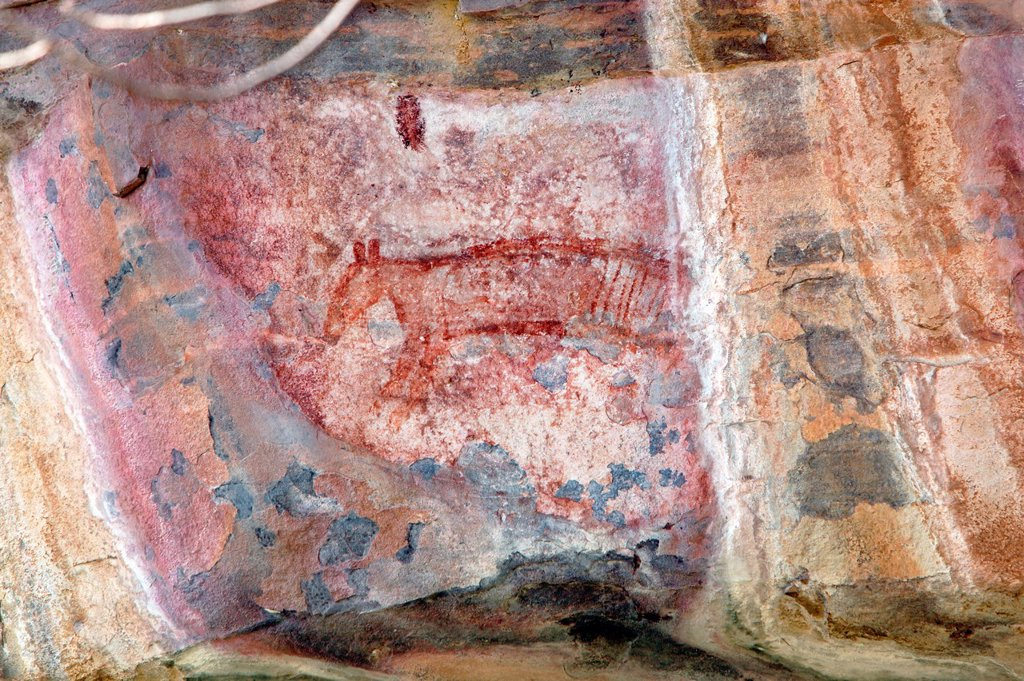 Stock Photo: 1566-1215448 Aboriginal rock art depicting a Thylacine Tasmanian Tiger, extinct on the mainland for some 2000 years  Ubirr rock art site in Kakadu National Park, Northern Territory, Australia