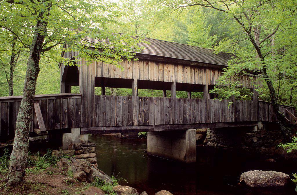 Stock Photo: 1566-1218936 Covered bridge, Devils Hopyard State Park, Connecticut