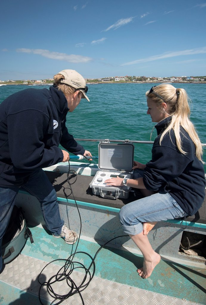 Shark scientists Oliver Jewell and Alison Towner deploy a directional hydrophone coupled to a VEMCO RM100 Ultrasonic telemetry receiving device which allows them to track acoustically tagged great white shark Carcharodon carcharias behaviour in real time   This allows the scientists to follow the sharks swimming in real time by receiving the pings emanating from tagged animals : Stock Photo