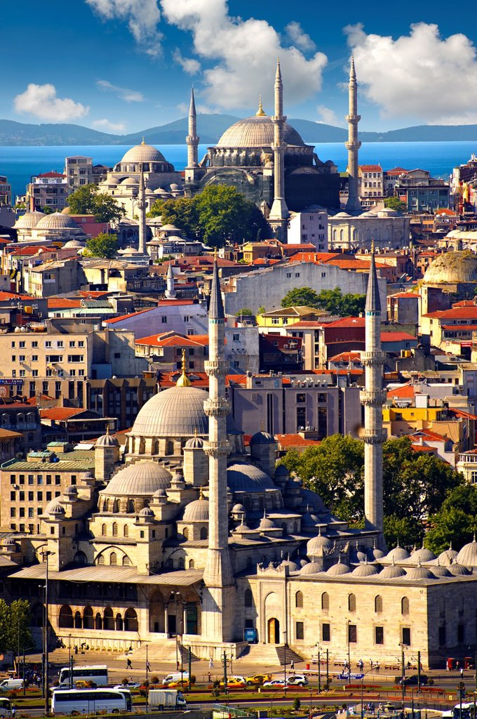 The Yeni Camii, The New Mosque or Mosque of the Valide Sultan foreground ordered by Safiye Sultan in 1597 on the banks of the Golden Horn, Istanbul Turkey : Stock Photo