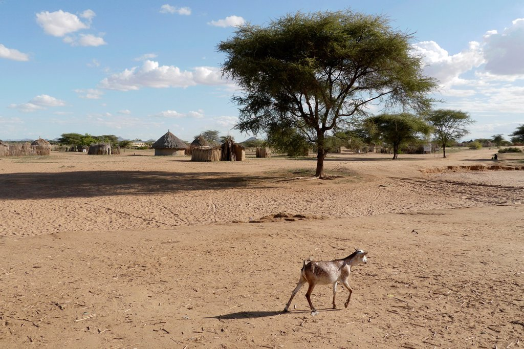 Stock Photo: 1566-1223924 KENYA  Lorugumu, Turkana  Arid scene with Turkana village in background   photo by Sean Sprague