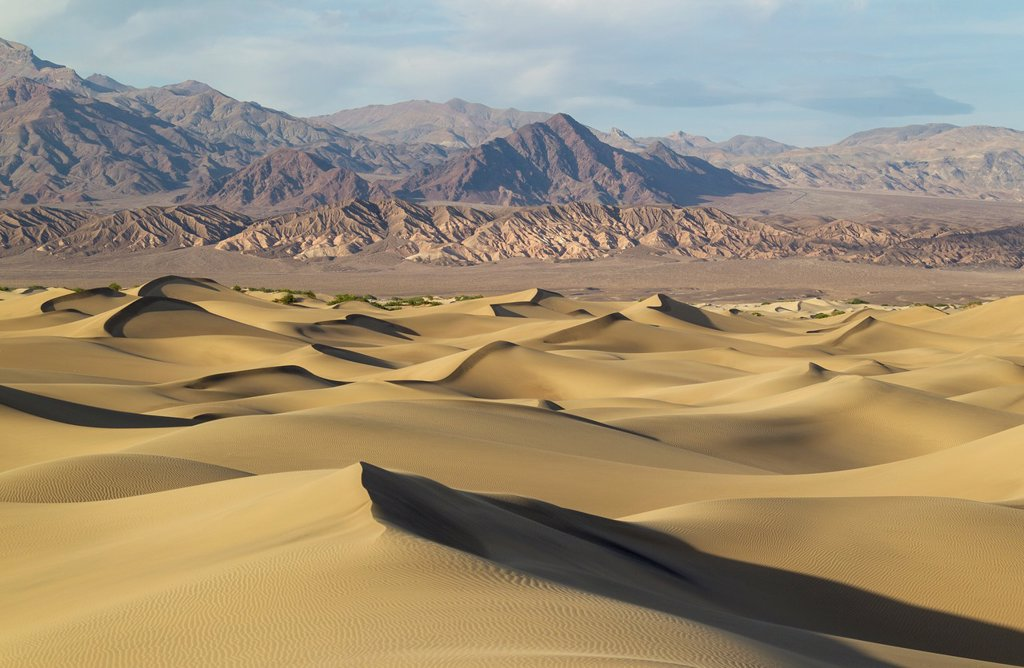 Stock Photo: 1566-1232337 Mesquite Flat Sand Dunes and Amargosa Range in the evening in the Death Valley  Death Valley National Park, California, USA