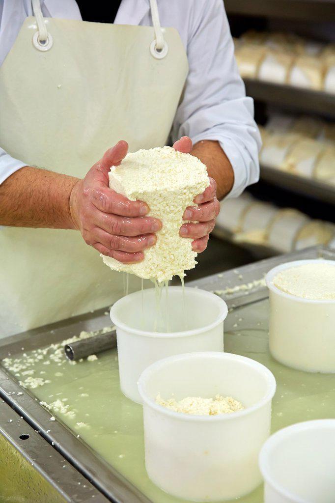 Making cheese from sheep´s milk Latxa  Designation of origin ´Idiazabal´  Cheese factory  Gomiztegi Baserria, Arantzazu, Oñati, Gipuzkoa, Basque Country, Spain : Stock Photo