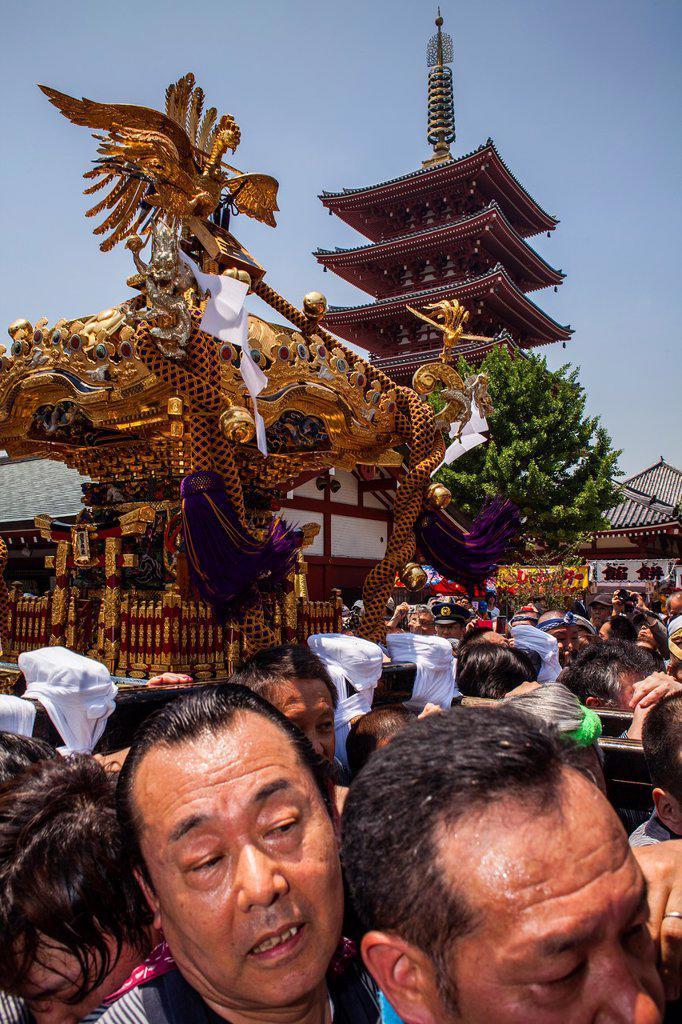 Stock Photo: 1566-1236081 Sanja Matsuri Festival, Sensoji Temple, Asakusa Jinja, Asakusa, Tokyo, Japan, Asia