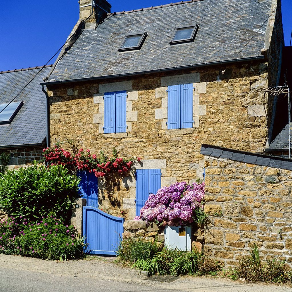 Stock Photo: 1566-1242951 Typical house with blue shutters and flowers Brittany France