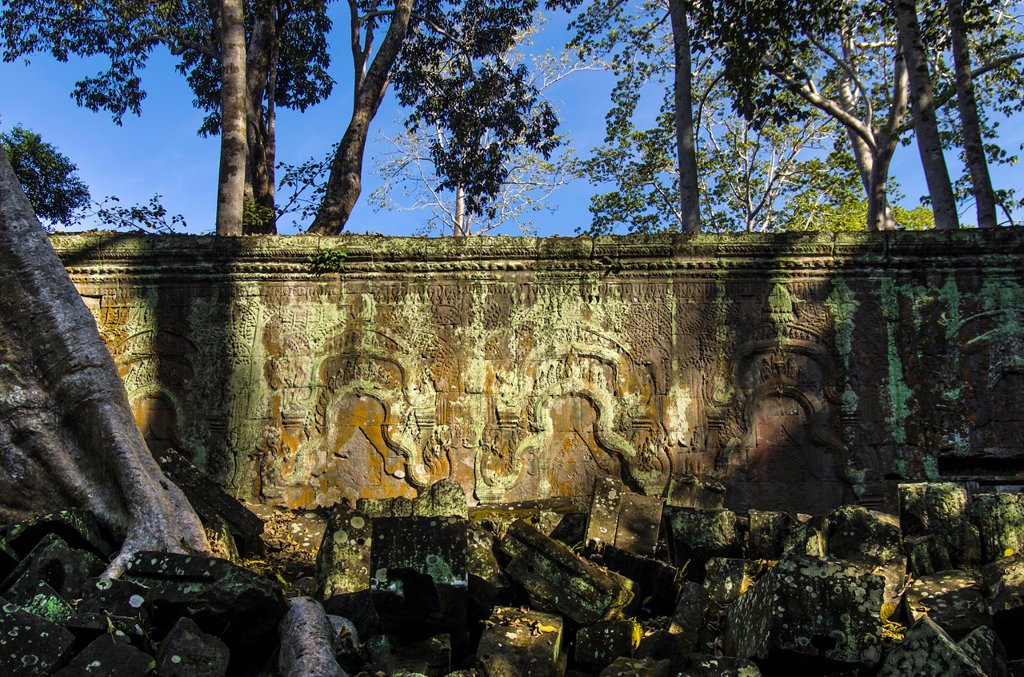 Bas-relief  Temple-Monastery of Ta Prohm  Angkor  Siem Reap  Cambodia : Stock Photo