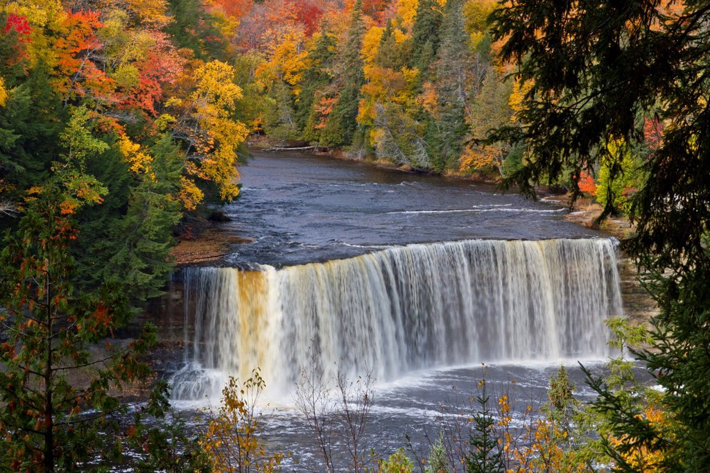 Stock Photo: 1566-1250563 The Upper Tahquamenon Falls with fall foliage color near Newberry, Michigan, USA