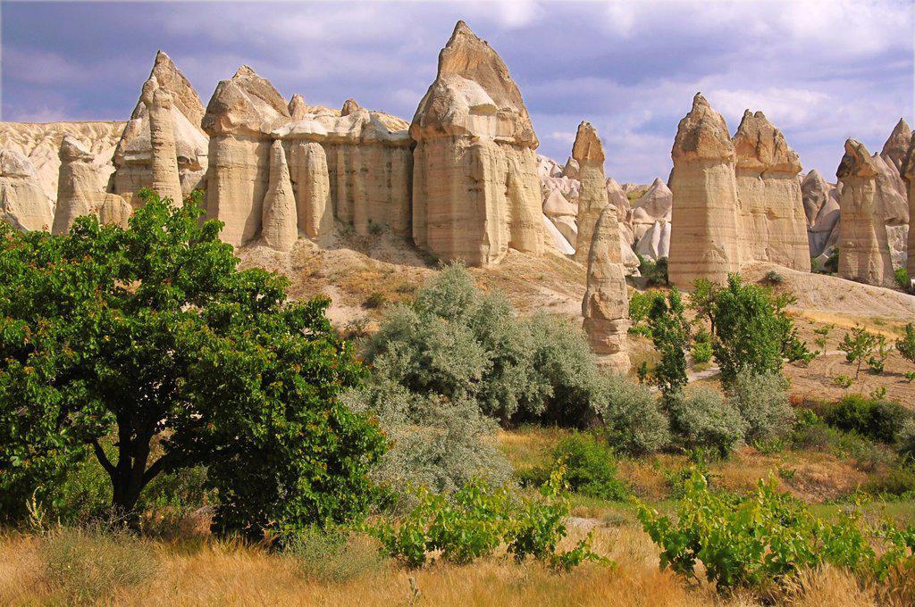 Stock Photo: 1566-1254457 Turkey-Cappadocia- Fairy Chimneys rock formation nearby Göreme.
