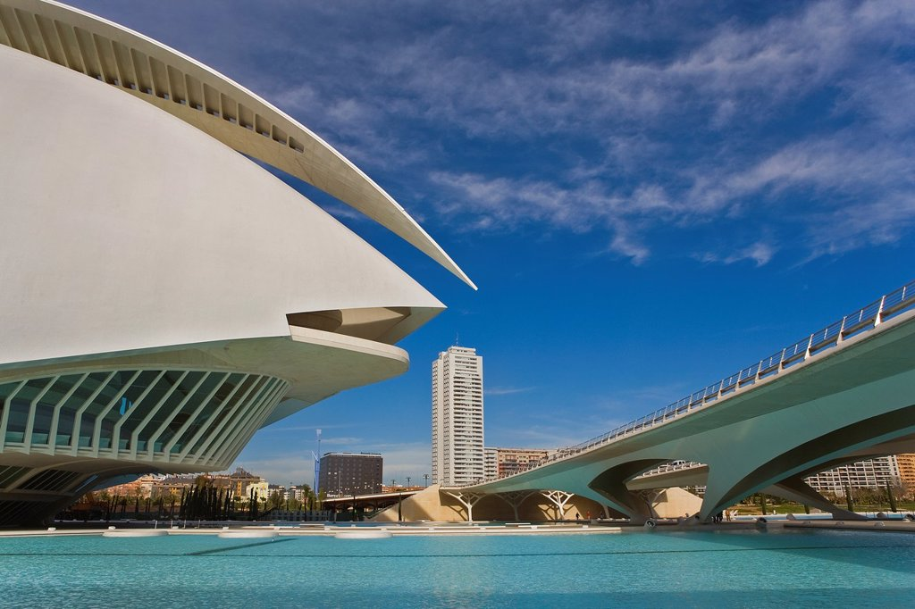 Stock Photo: 1566-1258918 Detail of Palacio de las Artes Reina Sofía,City of Arts and Sciences by S  Calatrava  Valencia  Spain