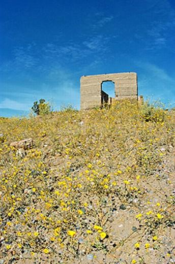 Stock Photo: 1566-247957 Ashford Mill ruins, Death Valley National Park, California