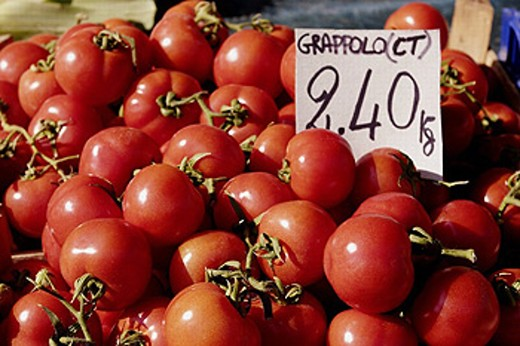 Tomatoes for Sale. Campo Dei Fiori. Rome. Italy : Stock Photo